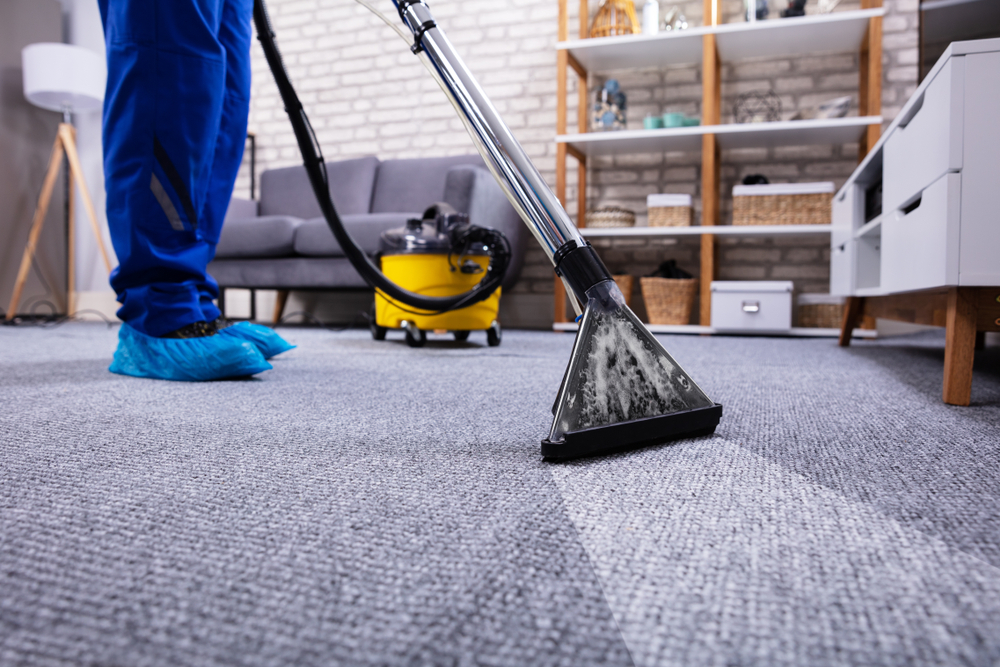 Basic Carpet Cleaning Information You Need Before You Buy Carpeting